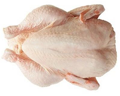 бройлер цыплёнок