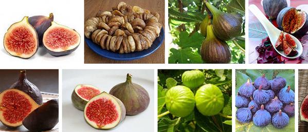 Винная ягода, инжир, фиги