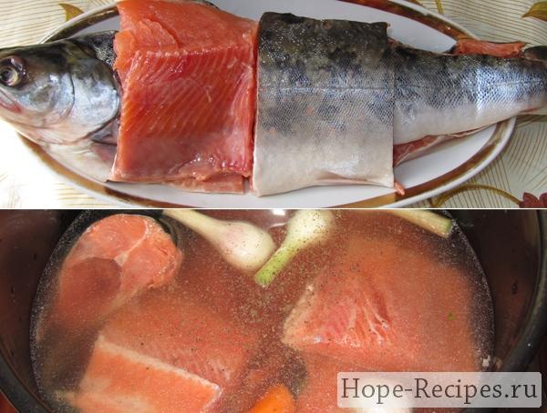 Красная рыба для ботвиньи