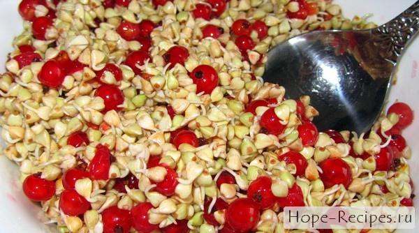 Проростки зеленой гречки с красной смородиной