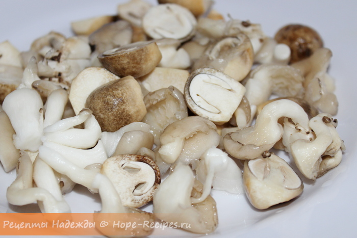 Свежие соломенные грибы и вешенки для супа с лапшой