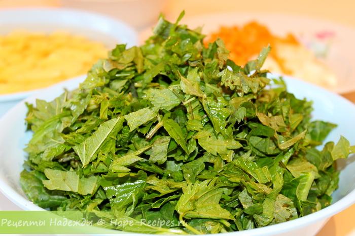 Как приготовить зеленый борщ со щавелем и крапивой